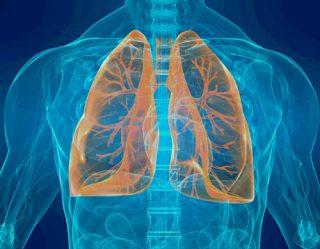 pneumologia treviso